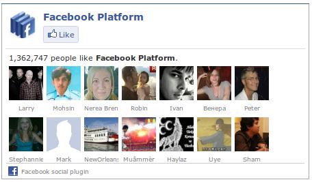 een voorbeeld van een facebook like widget box in WordPress
