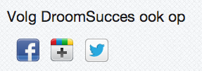 social media iconen op droomsucces.nl