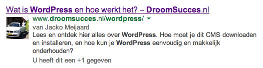 zoekresultaten in Google