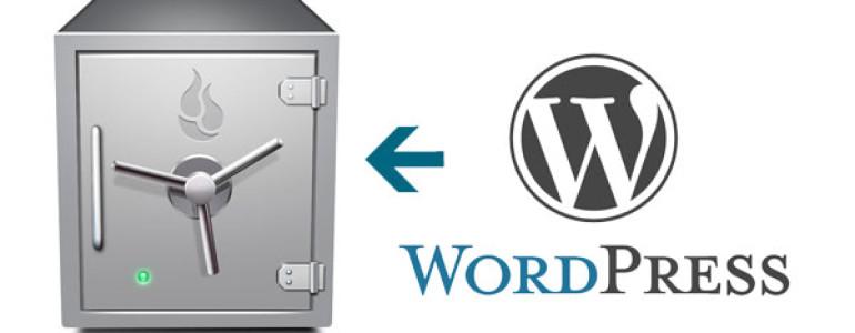 wordpress backup maken in de kluis
