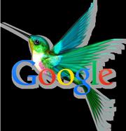 het logo van google hummingbird