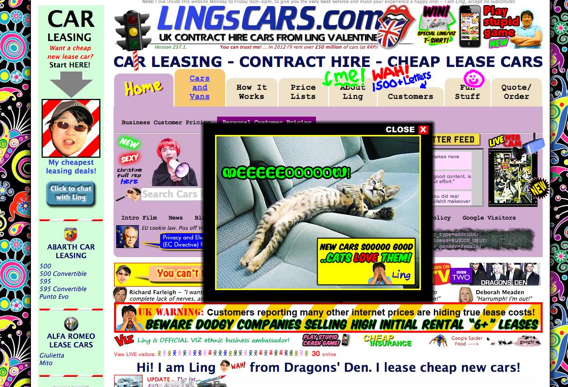Een voorbeeld van een drukke website