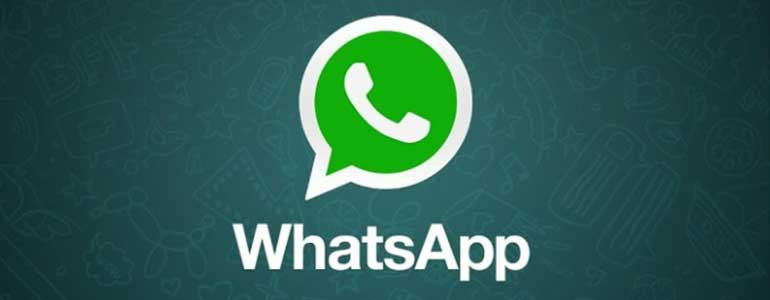 whatsapp knop op wordpress website