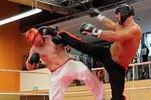 inkomen kickboxers